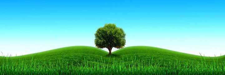 Ecologie,