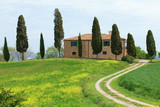 Typical Tuscany farmhouse with cupressus