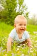 baby freude gras
