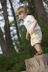 boy on tree trunk