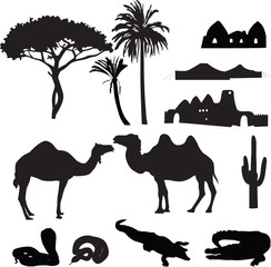 silhouettes of African desert
