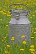 Milchkanne in Blumenwiese