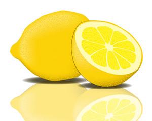 Zitrone Vektor
