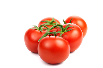 branch of red tomato
