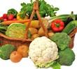 Gemüse vom Biobauer