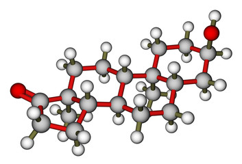 Androsterone, a male sex hormone. Molecular model