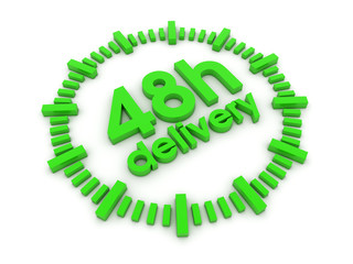 48h delivery 3d render illustration