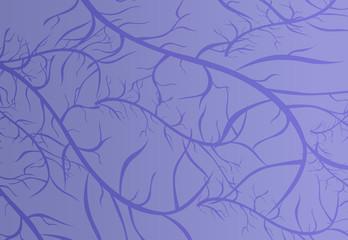 Purple vein texture