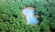 small keyhole shaped pond surrounded by a forest
