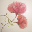Sweet pink flowers / Abstract floral background