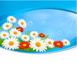 Nature background with summer colorful flowers