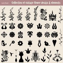 Vintage decoration elements for your design.Vector