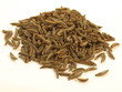 Cumin, isolated