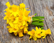 narcissus flowers on wooden background