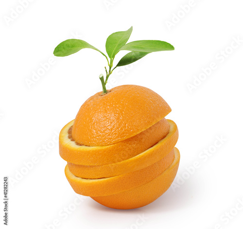 Stack of orange slices