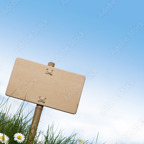 blank wooden sign, grass and daisies flowers