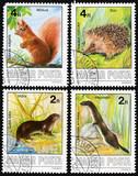 Mustela erminea, Sciurus vulgaris, Lutra, Erinaceus concolor poster