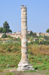 Temple Of Artemis Selcuk, nr Ephesus - Remains