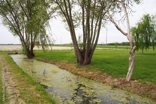 canale di irrigazione nella pianura veneta