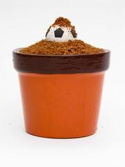 Vaso de planta com bola de futebol nascendo.