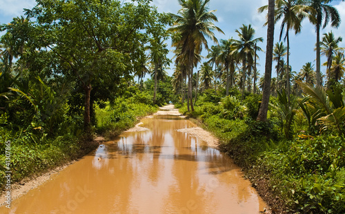 Road to Playa Rincon Puddle