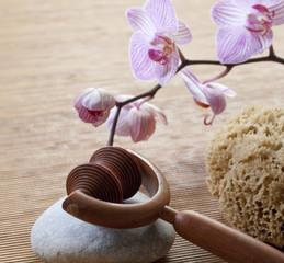pampering stimulating detoxifying