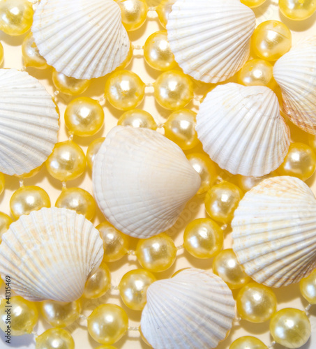 sea shells with pearls