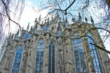 Cathedral in Den Bosch. Netherlands