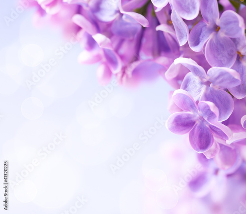 Fotobehang Lilac Art lilac flowers background
