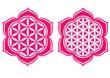 Blume des Lebens - Lotus Blüte - Schutz Symbol