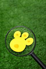 bunny track for Easter eggs hunt