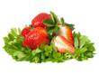 Erdbeeren auf  Waldmeister