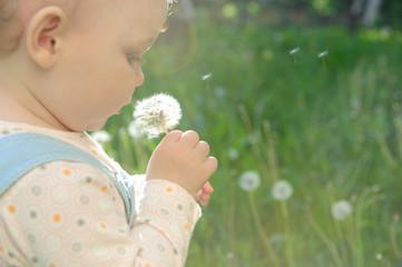 Blowing on dandelion