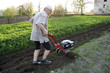 The farmer with a motor-cultivator