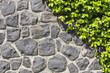 Fototapeten,wand,mauerwerk,backstein,steine
