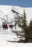 Skiing in Lebanon (Middle East) poster