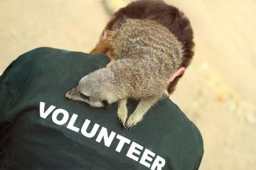 Meerkat and zookeeper
