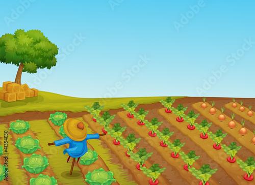 Foto op Canvas Boerderij scarecrow