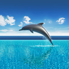 Dolphin jumps above pool water, summer sky aquarium
