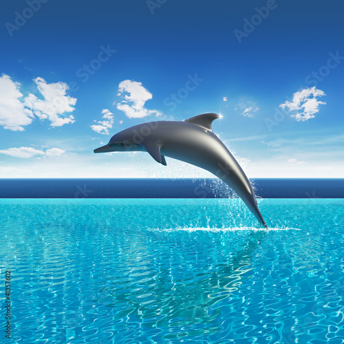 Fotobehang Dolfijnen Dolphin jumps above pool water, summer sky aquarium
