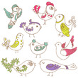 Set of different cute birds - for design and scrapbook in vector