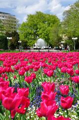 Kołobrzeg wiosną - park przy poczcie, fontanna