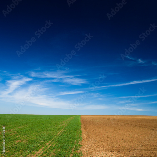 a seeded field and a field lying fallow