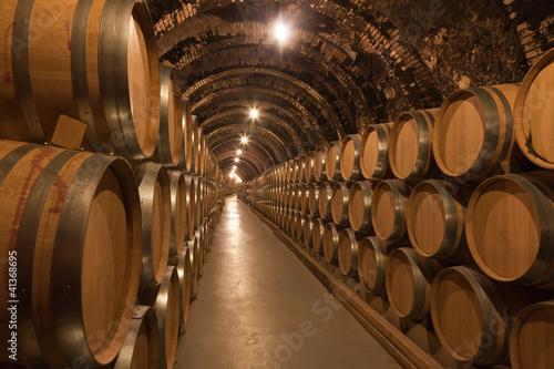 Sticker Barriles de vino en la bodega