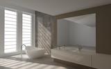Modern Luxury Bathroom Design Interior