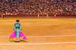 Matador in bullfighting arena at Madrid