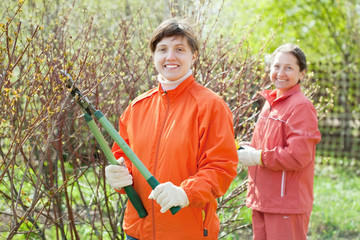 women pruned branches in  garden