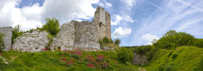 Richard Lion Heart Castle - Panorama