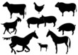 Haustiere Vektor-Set