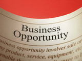Business Opportunity (Newspaper Headline)